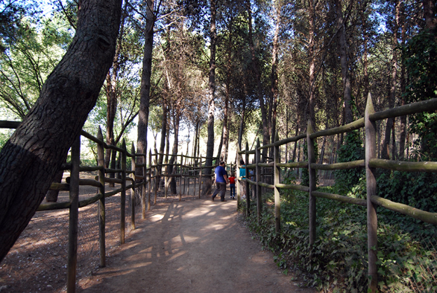 uno de los senderos del zoo de guadalajara